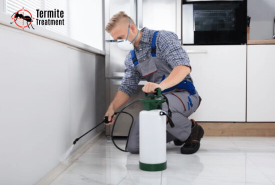 Effective Pest Control Solutions