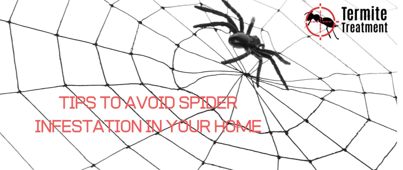 pest treatment by professional sydney