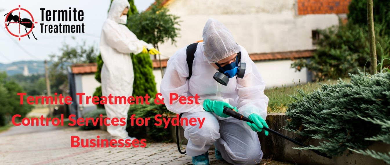 Termite Treatment & Pest Control Services for Sydney