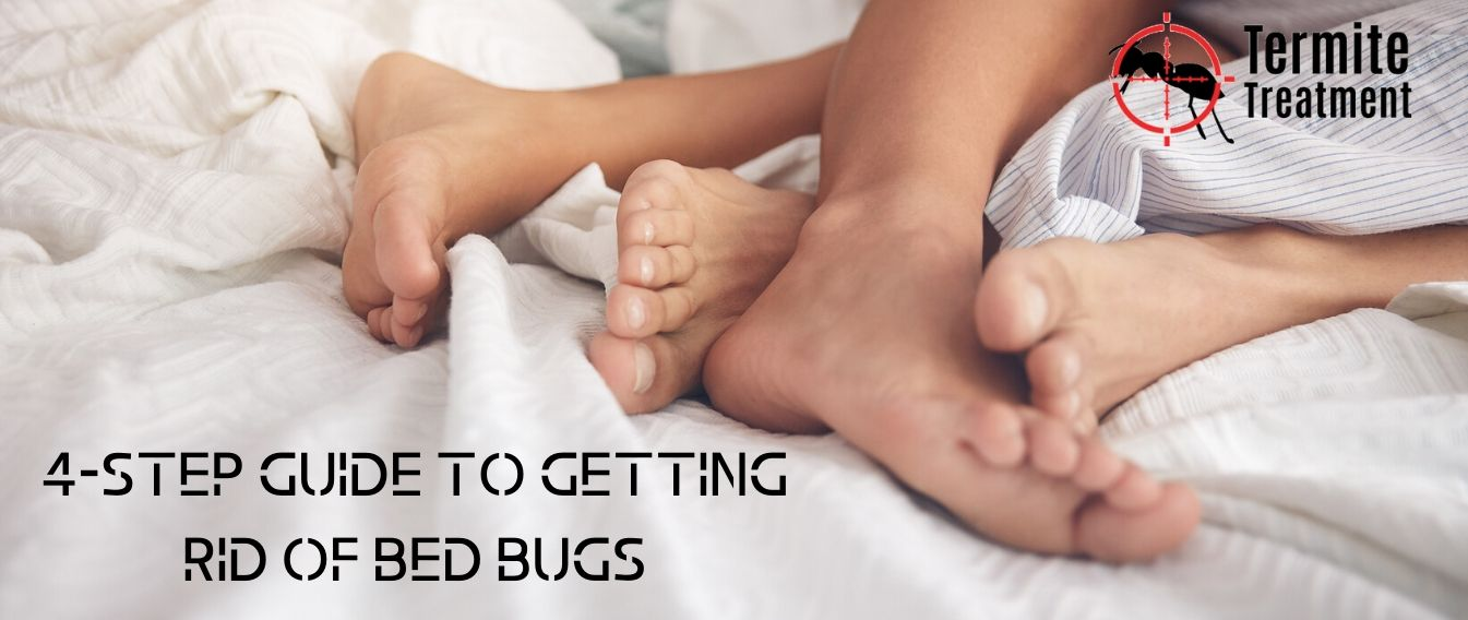 The 4-Step Guide to getting rid of Bed Bugs Sydney