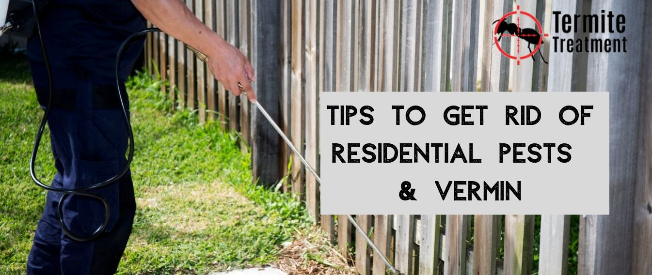 Rid of Residential Pests and Vermin - TermiteTreatmentSydney