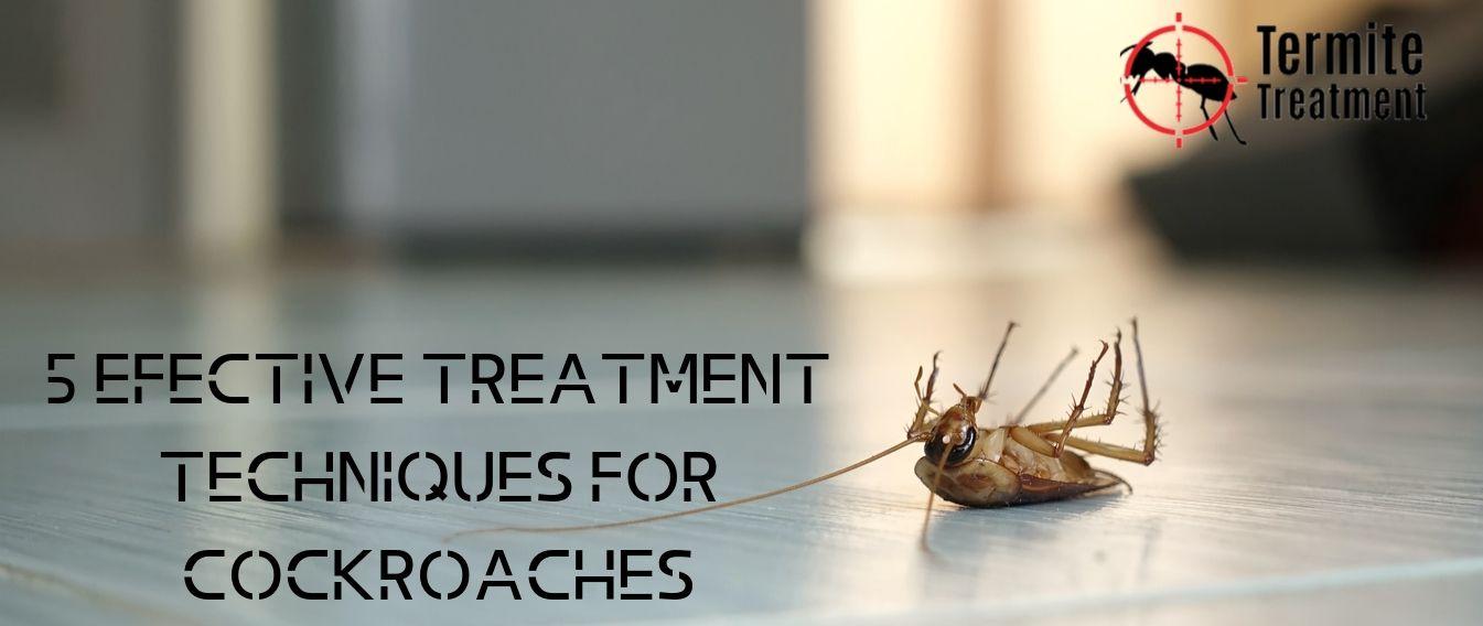 Top 5 Treatments for Cockroaches - TermiteTreatmentSydney