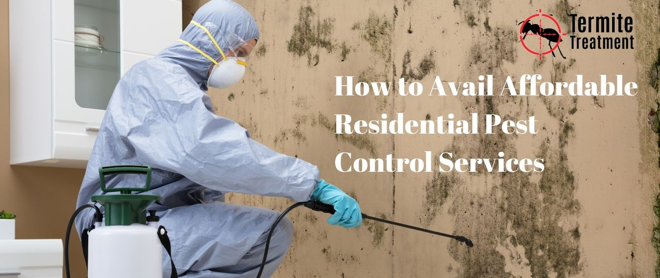 How to Avail Affordable Residential Pest Control Services in Sydney